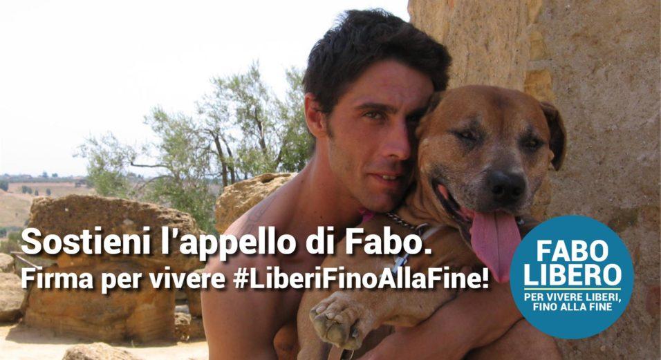BANNER COSCIONI-APPELLO FABO