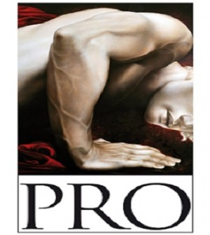 Logo PRO -Prosud-300x336