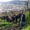 Festival delle Vigne metropolitane di Napoli, 13 e 14 gennaio